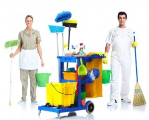 1358698271_professional-cleaning